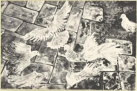 Pigeons on Cobblestone