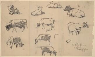 Cows [recto]