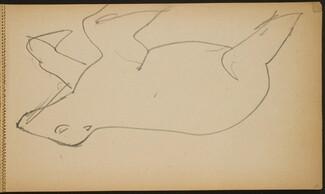 Seelöwe (Sea Lion) [p. 21]