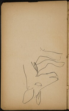 Detail eines Bärenkopfes (Detail of a Bear's Head) [p. 56]