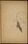 Gestalt mit erhobenem Glas (Figure with Raised Glass) [p. 65]