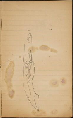Zwei Akrobaten (Two Acrobats) [p. 21]