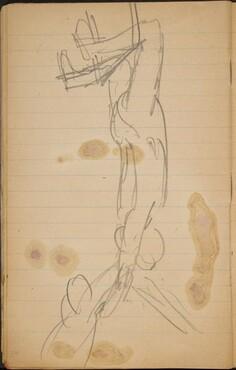 Zwei Akrobaten (Two Acrobats) [p. 24]