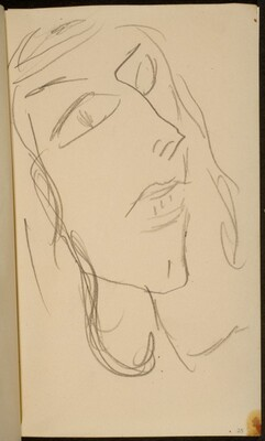 weibliches Gesicht (Woman's Face) [p. 25]