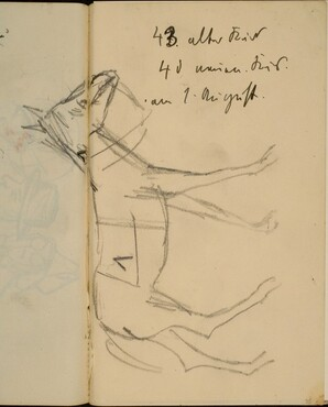 Pferd und Notizen (A Horse, Notations) [p. 35]