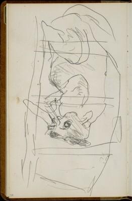 Parklandschaft (Cat Sleeping behind Bars)[p. 58]