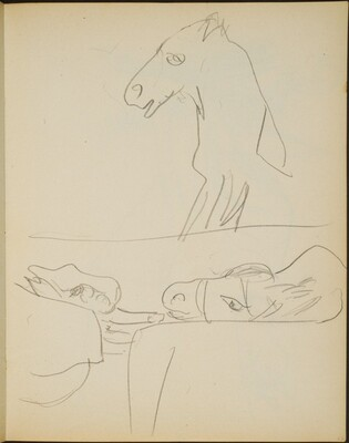 Studien eines Esels (Views of a Mule) [p. 23]