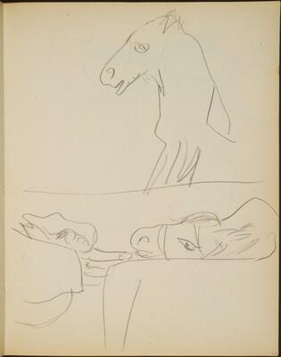 Studien eines Esels (Views of a Mule) [p. 23]