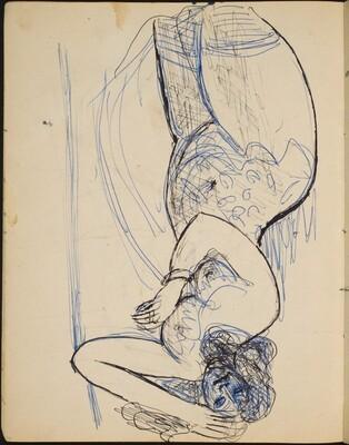Liegender weiblicher Akt (Reclining Nude) [p. 14]