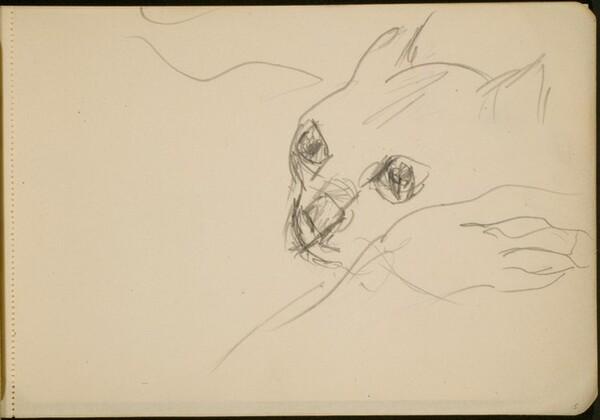 Studie einer Katze (Study of a Cat) [p. 5]