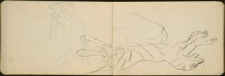 Springender Tiger (Tiger Leaping) [p. 24-25]