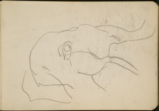 Elefantenkopf (Head of an Elephant) [p. 65]