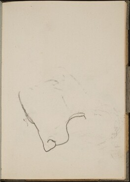 Begonnener Löwenkopf (Sketch of Lion Face) [p. 11]