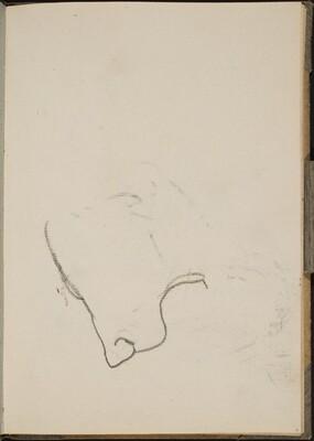 Begonnener Löwenkopf (Sketch of Lion Face) [p. 11]