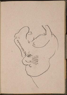 Nilpferdkopf mit geöffnetem Maul (Hippo with Open Mouth) [p. 15]