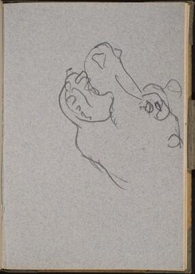 Nilpferdkopf im Profil (Hippo Head) [p. 19]