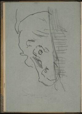 Nilpferd, halb unter Wasser (Hippo Partially Submerged) [p. 26]
