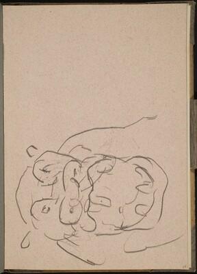 Nilpferdkopf mit geöffnetem Maul (Hippo Mouth Open) [p. 27]