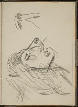 Löwenkopf im Profil (Lion Profile) [p. 33]