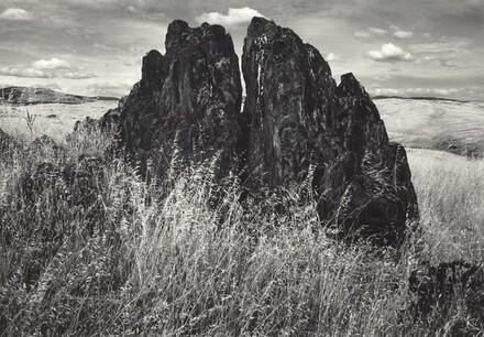 Metamorphic Rock and Summer Grass,  Foothills, the Sierra Nevada, California