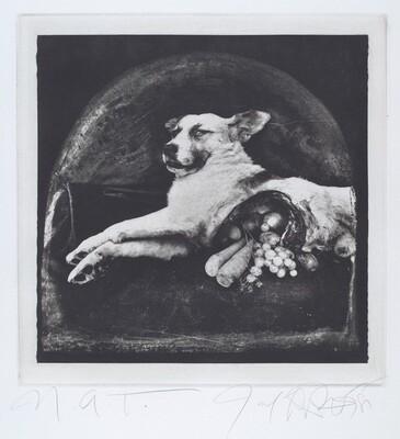 The Result of War: The Cornucopian Dog