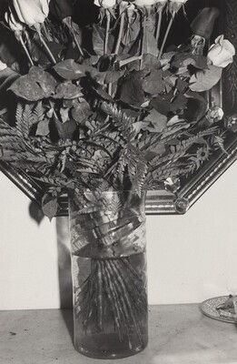 Roses in Vase (New York City, 1974)