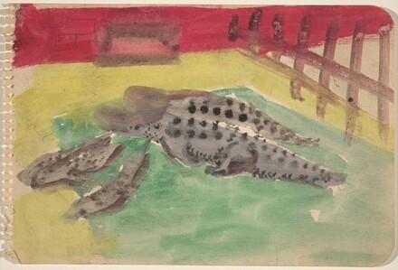 Alligators in a Pool