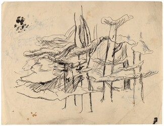 Grove of Trees [recto]