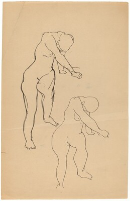 Studies of a Female Nude
