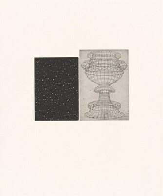Constellation - Uccello