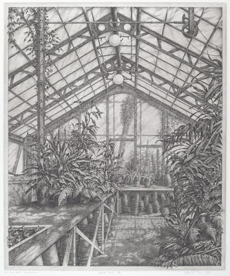 In the North Greenhouse