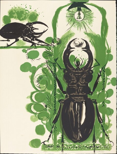 Beetles II (with electric lamp)