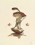 Claes Oldenburg, Apple Core - Autumn, 1990