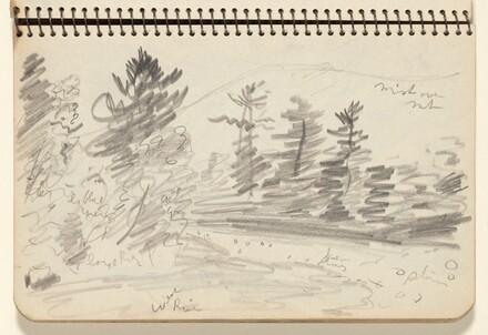Wooded Landscape