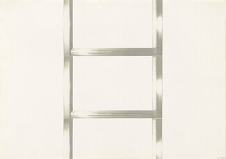 20 Foot Ladder for any Size Wall [I]