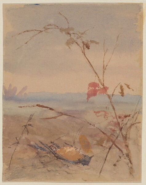Dead Yellow-breasted Bird in Autumn Landscape