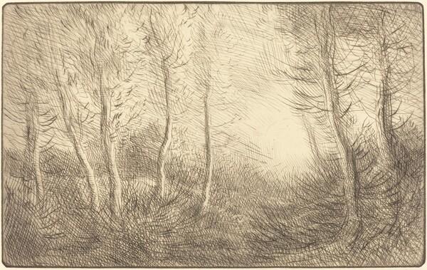Sunrise, Woods of Clamard (Lever du soleil, bois de Clamard)