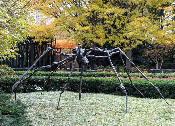 This sculpture, a stylized, metal spider with elongated, spindly legs, looms over a green hedge row in an outdoor setting in this horizontal photograph. The legs splay out from a cocoon-like body that tips down to our right. The legs are knobby at the joints and sinewy along their length. It looks as if pieces or cords of metal were woven together for the legs and the cylinder of the body. The metal is dark but appears white in this color photograph where the light illuminates it. Rows of hedges, a line of trees with dark trunks and lime-green leaves, and a black metal fence run behind the sculpture in the background.