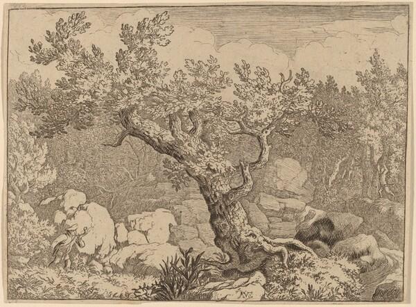 Sportsman near a Large Tree