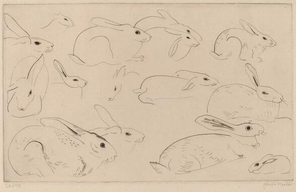 Rabbits (Lapins)