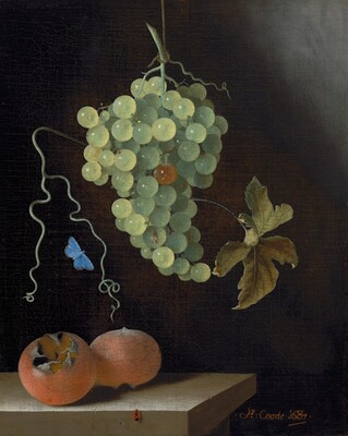 Adriaen Coorte, Still Life with a Hanging Bunch of Grapes, Two Medlars, and a Butterfly, 16871687