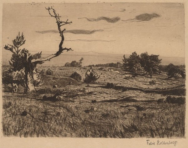 Heath with a Weathered Pine and a Path