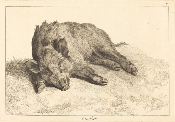 Sanglier (Wild Boar Lying Down, Head to the Left)