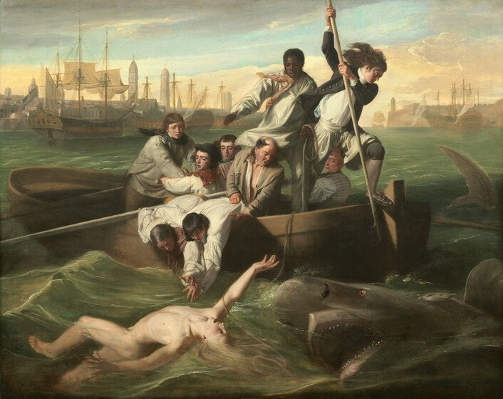 As if from another boat on the water, we look onto the side of a rowboat crowded with nine men trying to save a pale, nude young man who flails in the water in front of us as a shark approaches, mouth agape, from our right in this horizontal painting. In the water, the man floats with his chest facing the sky, and arms flailing, with his right arm overhead and the other stretched out by his side. Extending to our left, his left leg is bent and the right leg is straight, disappearing below the knee. His long blond hair swirls in the water and he arches his back, his wide-open eyes looking towards the shark behind him. To our right, the shark rolls up out of the water with its gaping jaws showing rows of pointed teeth. In the boat, eight of the men have light or swarthy complexions and one man has dark brown skin. The man with dark skin stands at the back center of the boat and he holds one end of a rope, which falls across the boat and around the upper arm of the man in the water. Another man stands at the stern of the boat, to our right, poised with a long, hooked harpoon over the side of the boat, ready to strike the shark. His long dark hair blows in the wind and he wears a navy-blue jacket with brass buttons, white breeches, blue stockings, and his shoes have silver buckles. Two other men wearing white shirts with blousy sleeves lean over the side of the boat, bracing each other as they reach toward the man in the water. An older, balding man holds the shirt and body of one of this pair and calls something, his mouth open. The other men hold long oars and look into the water with furrowed brows. The tip of a shark's tail sticks out of the water to our right of the boat, near the right edge of the canvas. Along the horizon line, which comes three-quarters of the way up the composition, buildings and tall spires line the harbor. The masts of boats at port creates a string of crosses against the light blue sky. Steely gray clouds sweep across the upper left corner o