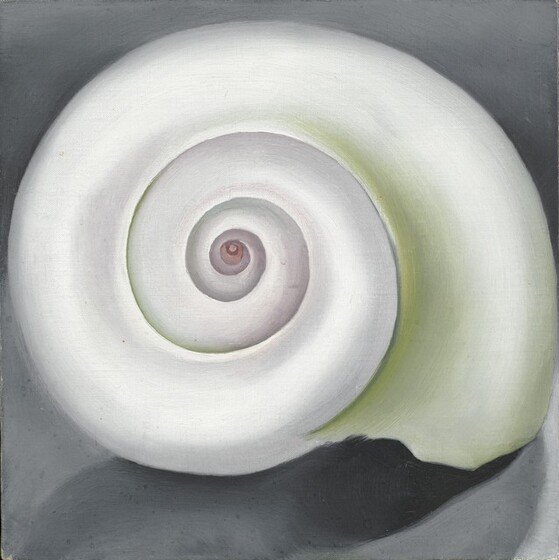 The spiraling whorls of a nearly round, pearl-white shell fills this square painting. The inner edges of the shell's whorls are shaded with pale spring green, especially to our right, and the innermost spiral is pale pink. The outer lip, that is, the open end of the shell faces down to our right. The shell sits against a stone-gray background and casts a shadow towards our left.