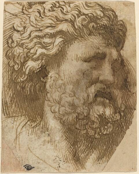 Head of a Man