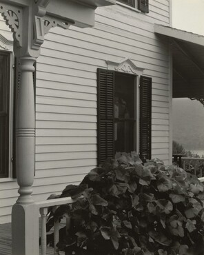 image: House and Grape Leaves