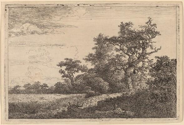 Grain Field at the Edge of a Wood (Corn Field)