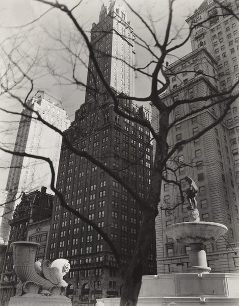 Central Park Plaza: Hotel Sherry Netherland (Center), Hotel Savoy Plaza (Right), Manhattan, Angle: From 58th Street and Fifth Avenue, Manhattan