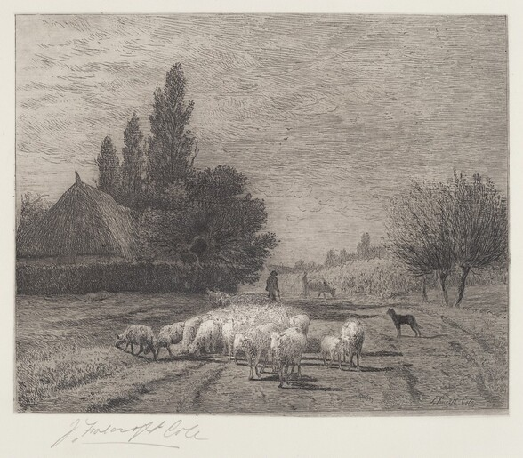 Village Street in France With a Flock of Sheep